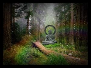 Buddha-Forest-Statue800