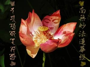 Buddha in Lotus-Daimoku800